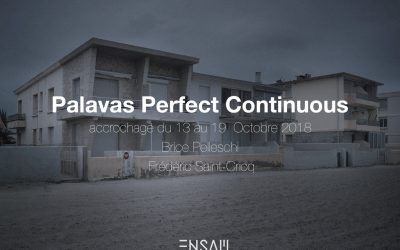 PALAVAS PERFECT CONTINUOUS